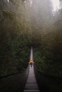Een Ster van een Korinthiër identiteit overwinning rijkdom belofte bediening God Bijbel Jezus man wandelen bos brug touw geel groen